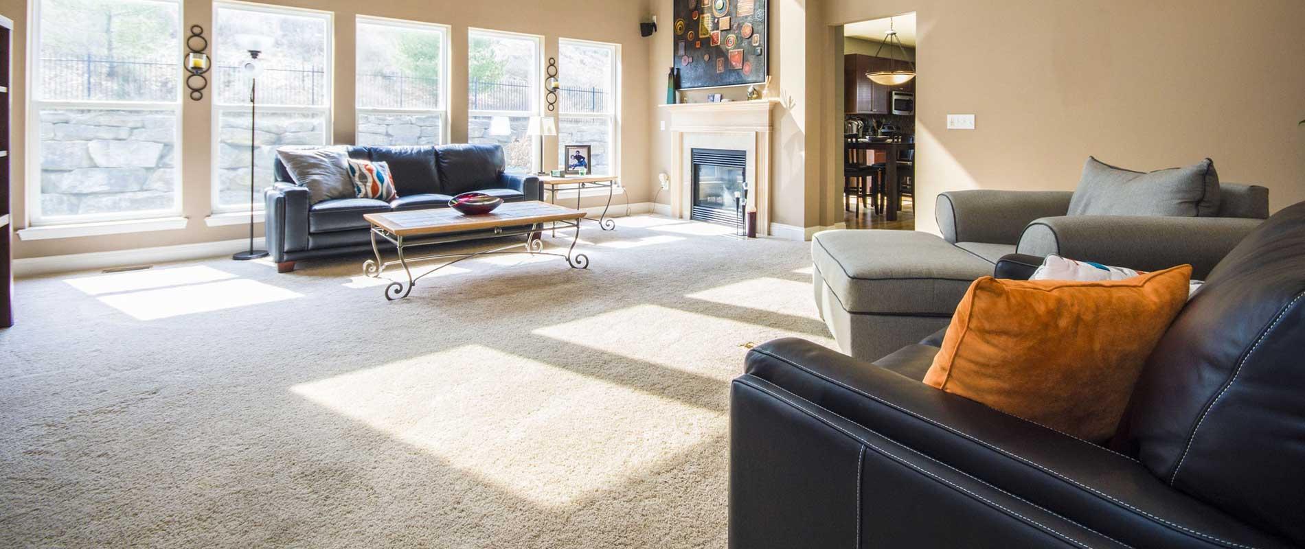 carpet supplier cardigan
